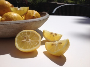 Reference photo for Lemons in Summer painting