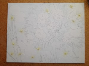 Drawing with Seed Heads