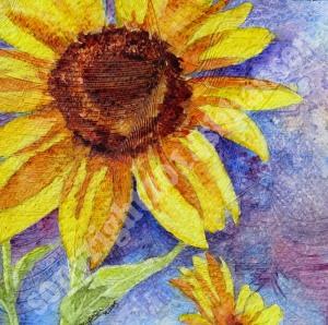 Singing Sunflower copyright