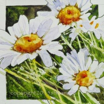 Daisy, 8x8 SOLD