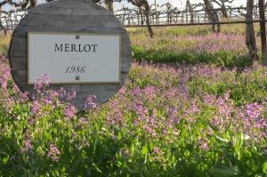 Cave B Winery Merlot sign