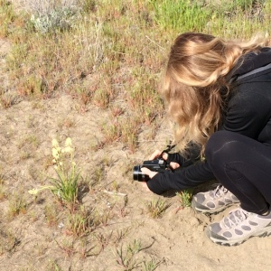 Me, taking up-close shots of a wildflower