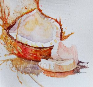 Island Coconut, 8x8 original watercolor on gesso-covered watercolor paper. $50
