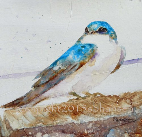 Tree Swallow, 8x8 original on #300 textured watercolor paper. $50