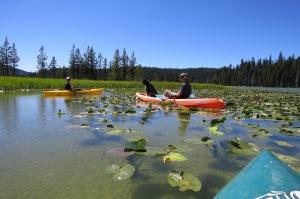 Kayaking with the boys and Sheba