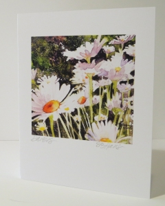 Daisy greeting card, personally hand-signed and titled