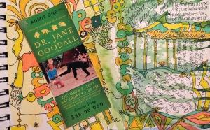 Detail, journal entry Jane Goodall