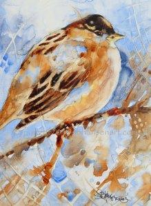 Winter Sparrow, original watercolor on Plexiglas, Private collection