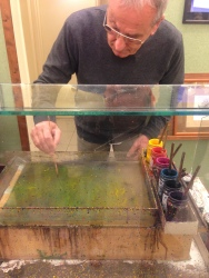 Demonstration in Paper Marbling